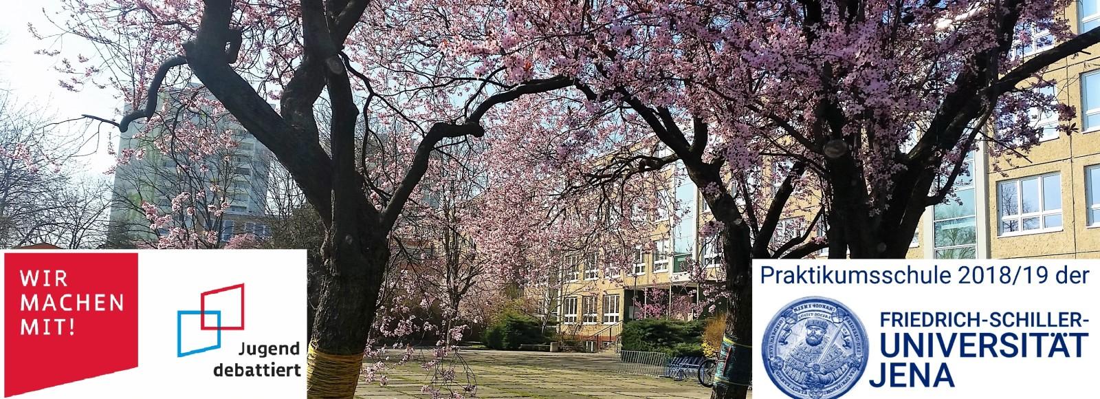 Schule im Frühling 1